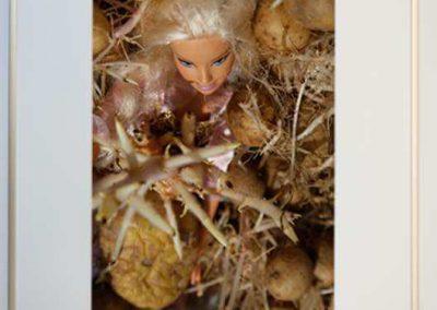 Adrey Caljé - Barbie Nieuwe Oogst